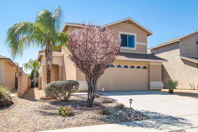 Tucson Single Family Home For Sale: 2429 W Tyler River Drive