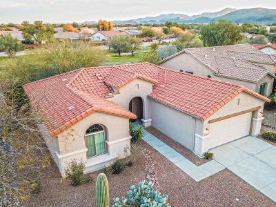 Tucson Single Family Home For Sale: 7555 W Mystic Sky Lane