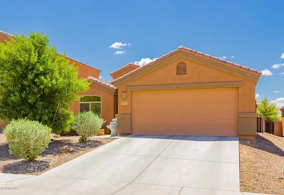 Tucson Single Family Home For Sale: 4691 W Hoha Lane