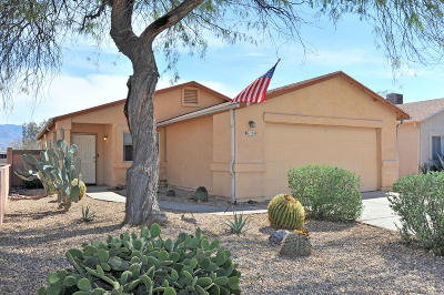 Tucson Single Family Home For Sale: 6134 N April Drive