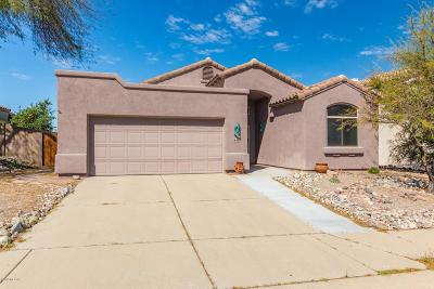 Tucson Single Family Home For Sale: 941 N Western Ridge Trail