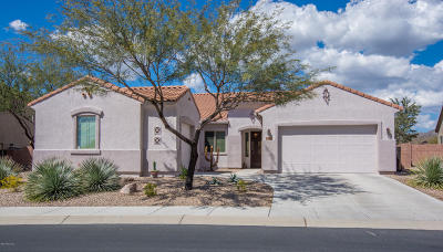 Marana Single Family Home For Sale: 12555 N Wind Runner Parkway