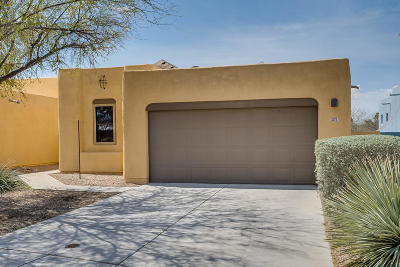 Tucson Single Family Home For Sale: 3370 S Lakeside View Drive