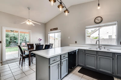 Tucson Single Family Home For Sale: 9419 N Warbler Place