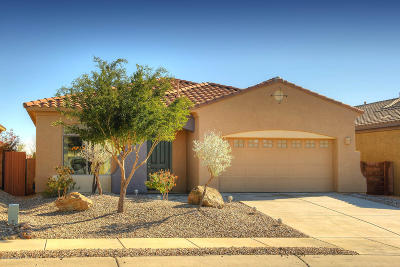 Marana Single Family Home Active Contingent: 12720 N Gentle Rain Drive