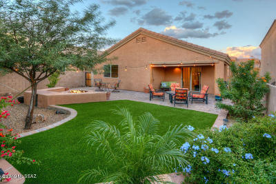 Tucson Single Family Home For Sale: 7895 N Chainfruit Cholla Drive
