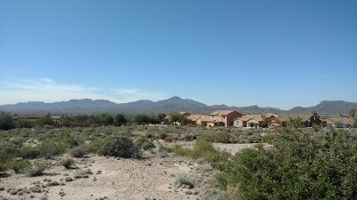 Pima County Residential Lots & Land For Sale: W Cortaro Farms Road #1