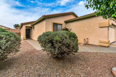 Marana Single Family Home For Sale: 5544 W Crimson Bluff Drive