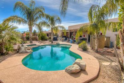Tucson Single Family Home For Sale: 8818 N Sky Dancer Circle