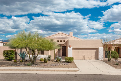 Marana Single Family Home For Sale: 13194 N Pier Mountain Road