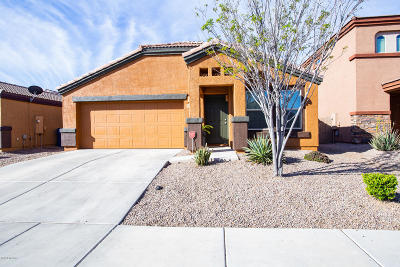 Tucson Single Family Home For Sale: 8621 N Continental Links Drive