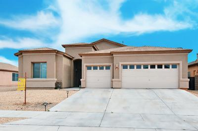 Tucson Single Family Home For Sale: 8377 W Calle Sancho Panza