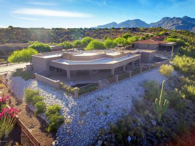 Tucson Single Family Home For Sale: 4162 N Quail Canyon Drive