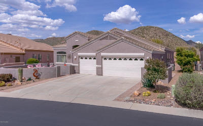 Marana Single Family Home For Sale: 5086 W Coyote Gulch Loop