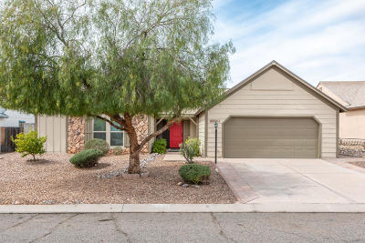 Tucson Single Family Home For Sale: 8661 N Holly Brook Avenue