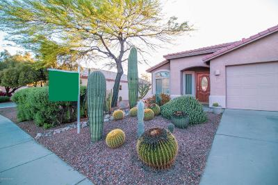 Oro Valley Single Family Home For Sale: 12275 N Kylene Canyon Drive