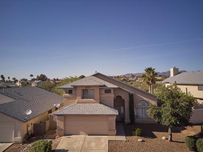 Tucson Single Family Home For Sale: 5056 E Didion Drive