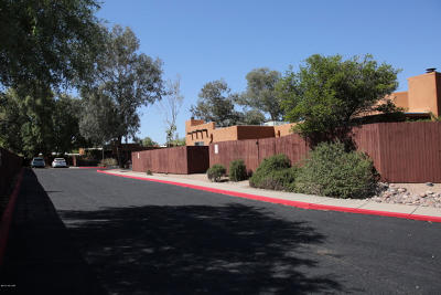 Tucson Residential Income For Sale: 1650 E Adelaide Drive