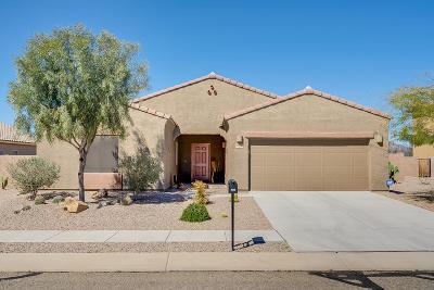 Tucson Single Family Home For Sale: 8026 W Fish Eagle Drive