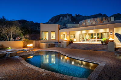 Tucson Single Family Home For Sale: 7417 N Secret Canyon Drive