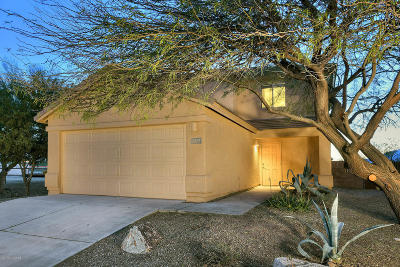 Tucson Single Family Home For Sale: 2715 S Pantano Edge Drive