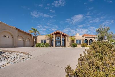 Tucson Single Family Home For Sale: 2995 E Manzanita Ridge Place