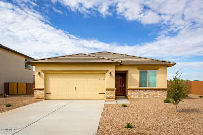 Marana Single Family Home For Sale: 11696 W Thomas Arron Drive