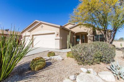 Tucson Single Family Home For Sale: 8449 W Benidorm Loop