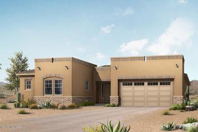 Pima County Single Family Home For Sale: 3400 N Fiesta Flower Drive