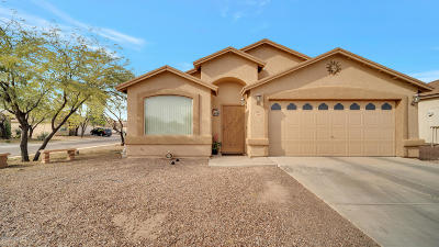 Tucson Single Family Home For Sale: 1390 W Calle Rio Rojo