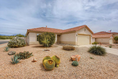 Tucson Single Family Home For Sale: 8522 N Deer Valley Drive