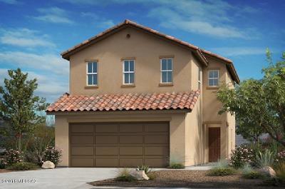 Tucson Single Family Home For Sale: 5850 N Penumbra Lot 5 Court N