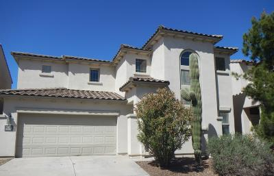 Sahuarita Single Family Home For Sale: 14830 S Camino Tierra Alegra