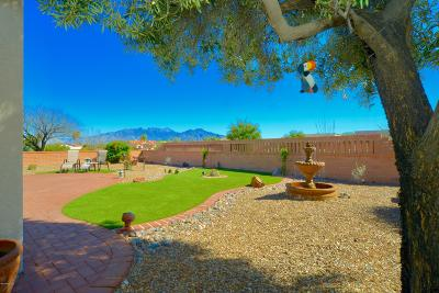 Green Valley Single Family Home For Sale: 1762 W Circulo De La Pinata