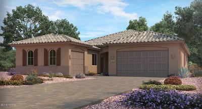 Tucson Single Family Home For Sale: 950 S Castar Drive S