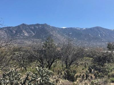 Catalina Residential Lots & Land For Sale: Roadrunner