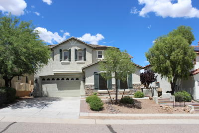 Sahuarita Single Family Home For Sale: 828 W Paseo Celestial