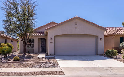 Marana Single Family Home For Sale: 9760 N Sandy Mesa Place