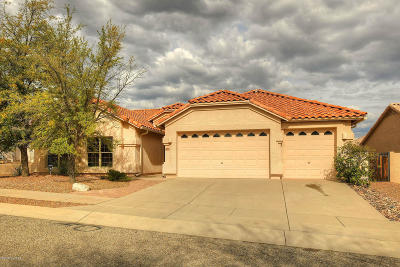 Tucson Single Family Home For Sale: 7541 E Camino Amistoso
