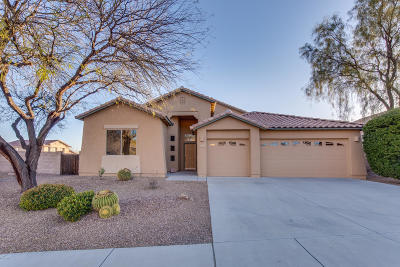 Tucson Single Family Home For Sale: 8014 N Rondure Loop