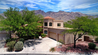 La Paloma Single Family Home For Sale: 3771 E Calle Del Cacto