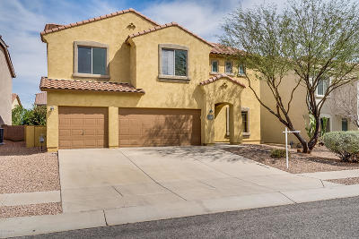 Sahuarita Single Family Home For Sale: 855 W Vuelta Granadina