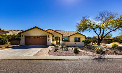 Green Valley Single Family Home For Sale: 2194 E Falcon Vista Drive