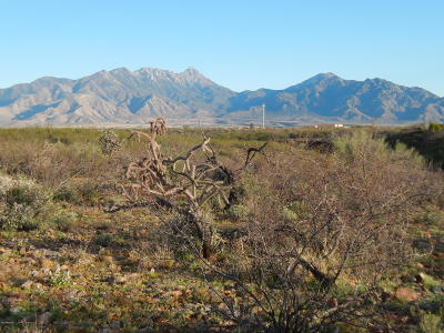 Green Valley Residential Lots & Land For Sale: 1046 E Mesquite Springs Place #132