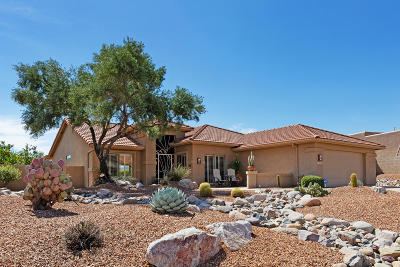 Pima County, Pinal County Single Family Home For Sale: 63447 E Whispering Tree Lane