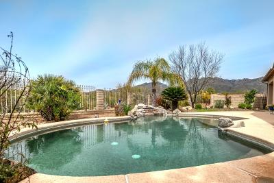 Tucson Single Family Home For Sale: 4901 N Sabino Valley Place