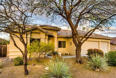 Marana Single Family Home For Sale: 12880 N Paleozoic Drive