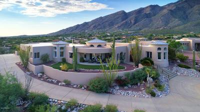 Tucson Single Family Home For Sale: 6361 N Placita Derrumbadera