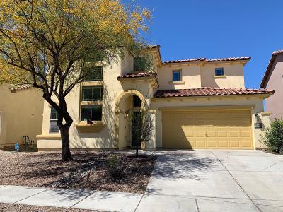 Pima County Single Family Home For Sale: 14240 S Avenida Zumba