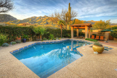 Single Family Home For Sale: 7231 E Desert Moon Loop